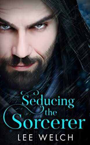 Seducing the Sorcerer by Lee Welch